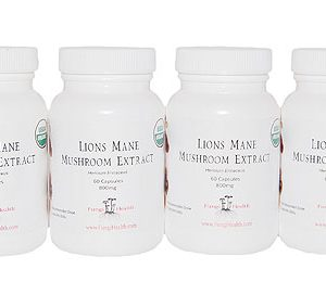 Lions Mane Extract - 6 Month Supply
